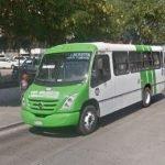 Camión Urbano Veracruz